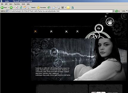Website Template #14354