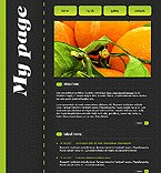 Flash template #15868 by Di