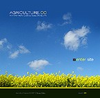 Template #16258 