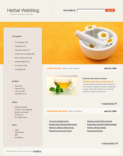 Website Template #16692