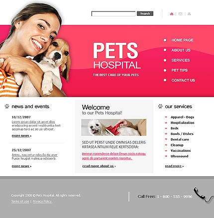 Website Template #20656