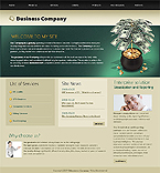 Turnkey Website #22881