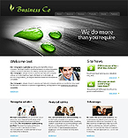 Turnkey Website #23398