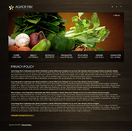 Website Template #23722