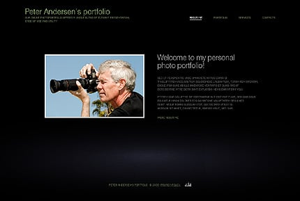 Website Template #24666