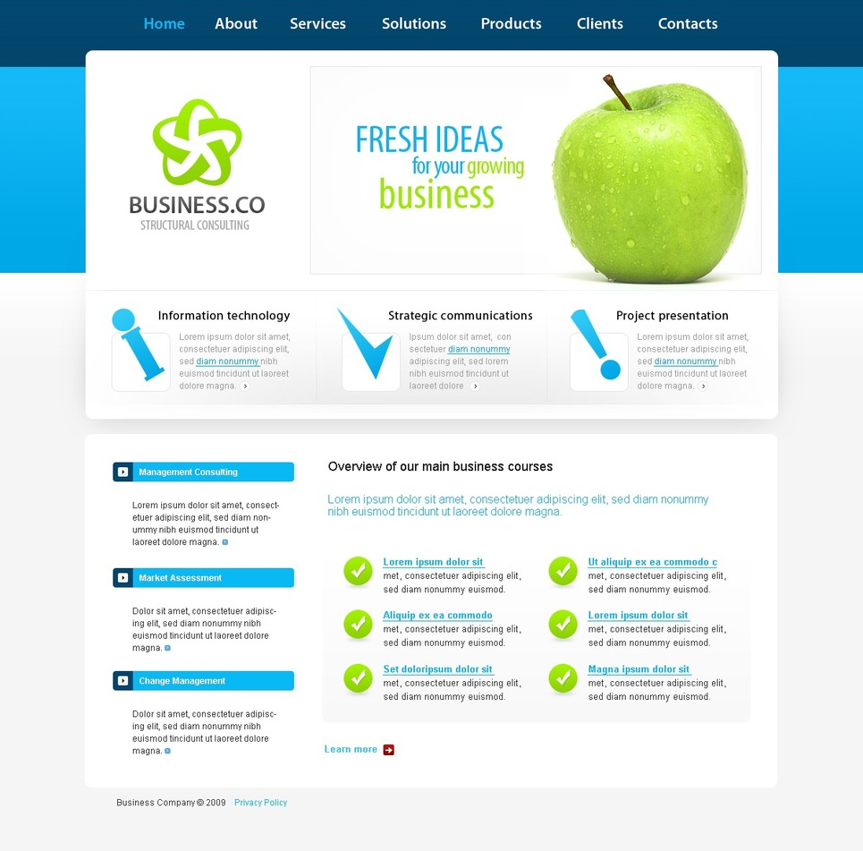 Consulting website template 24866 for Consulting website