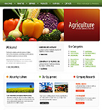 Template #25042 