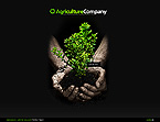 Template #25612 