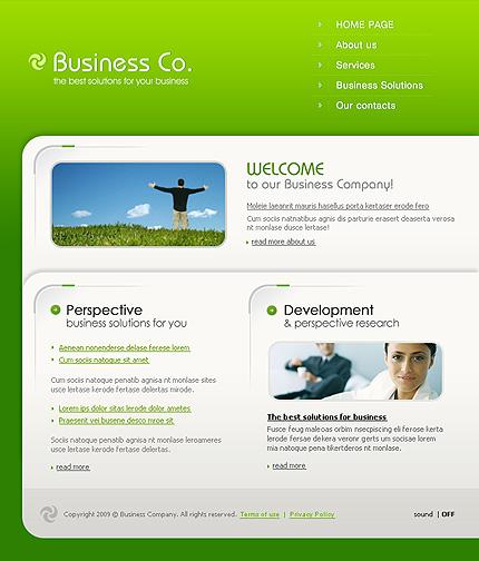 Заказ создания сайта или интернет магазина на тему Бизнес, St. Patrick Green Templates, на основании шаблона №26003.