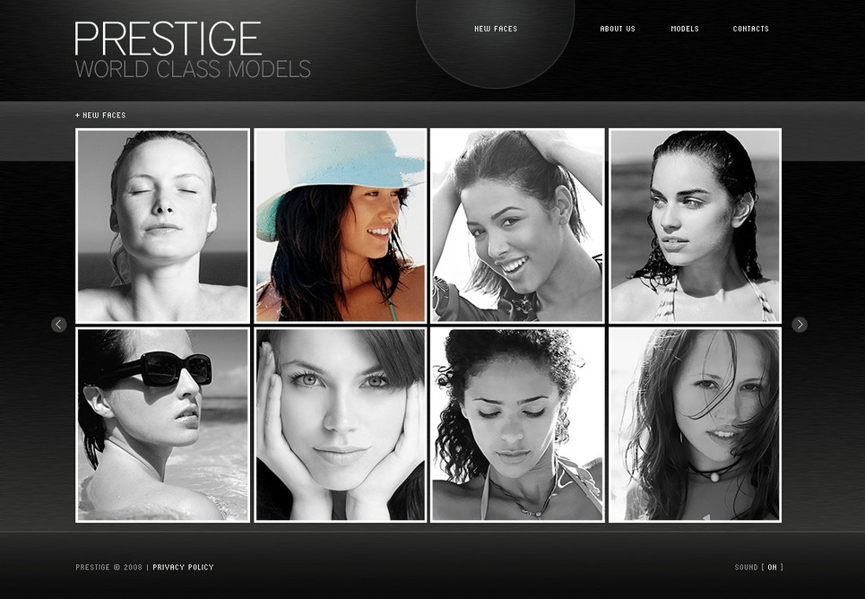 Model Agency Flash CMS Template New Screenshots BIG
