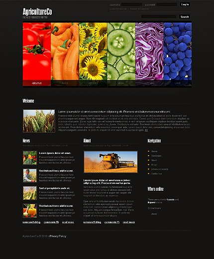 Website Template #26593