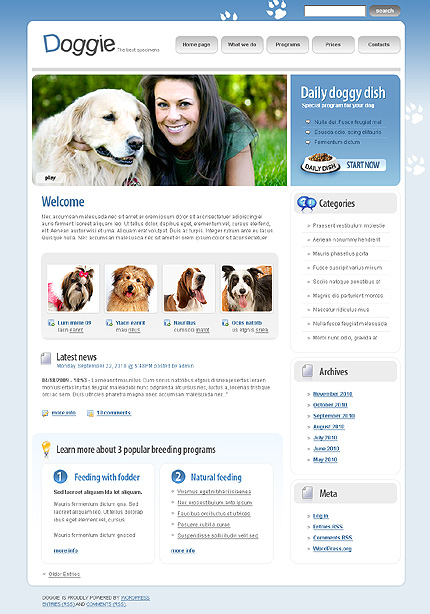 Website Template #29263