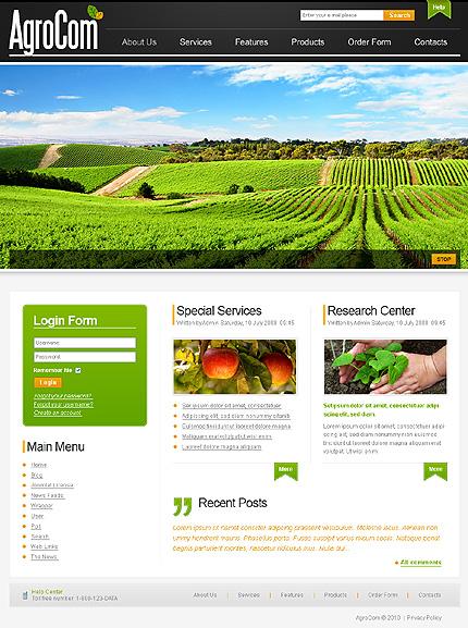 Website Template #30011