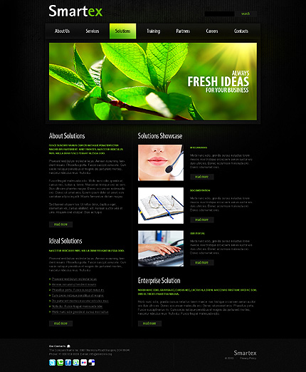 Website Template #30020