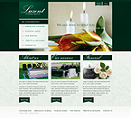 Website template #30293 by Mercury