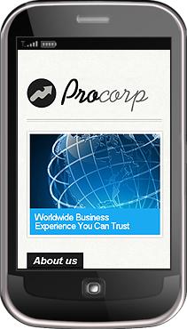 Заказ создания сайта или интернет магазина на тему Бизнес, Мобильные шаблоны, на основании шаблона №30657.