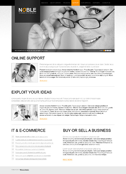 Website Template #30670