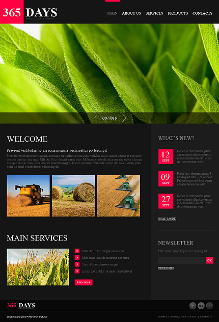 Website Template #31089
