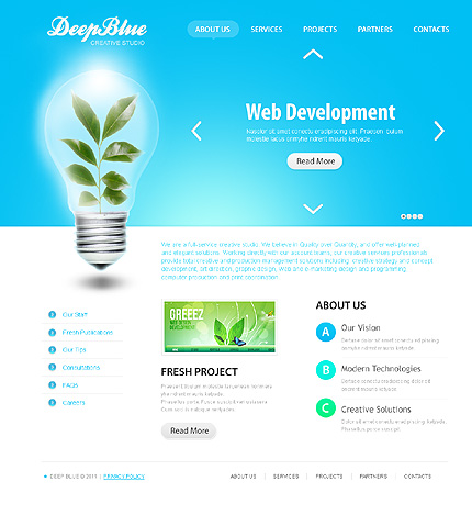Заказ создания сайта или интернет магазина на тему Web-дизайн, на основании шаблона №32439.