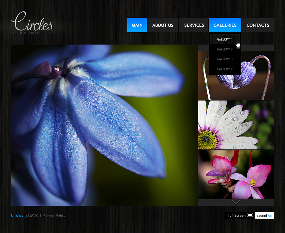 Flash CMS Template with Multiple Photo Galleries - image