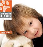 Животные и домашние любимцы