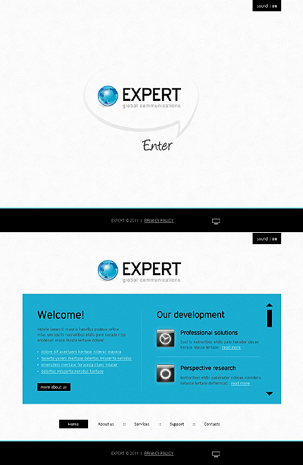 Website Template #33574