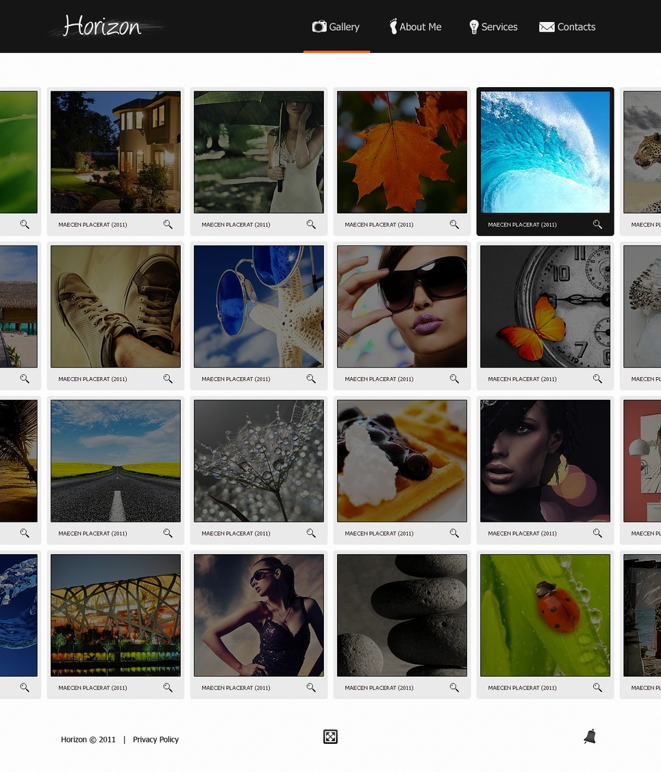 Photo Gallery Flash Template New Screenshots BIG