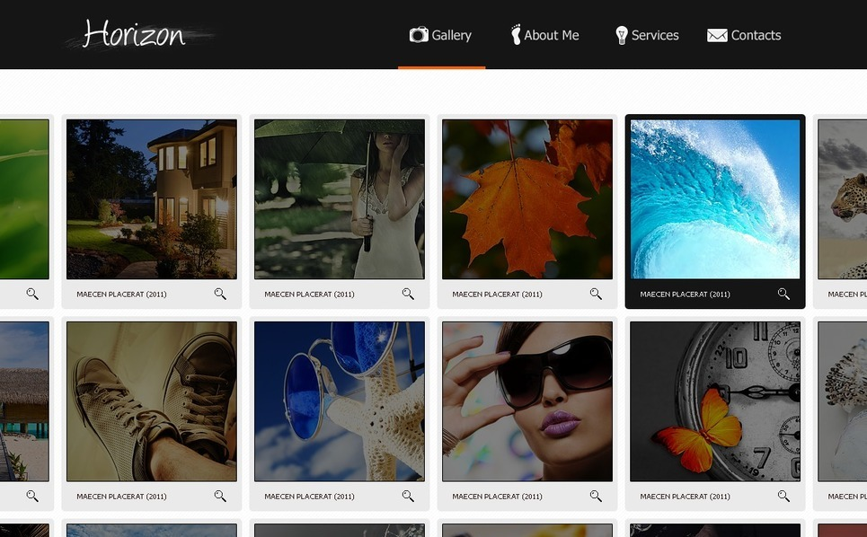 Photo Gallery Flash Template New Screenshots BIG