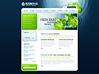 Turnkey Website 2.0 #35111 by Mercury