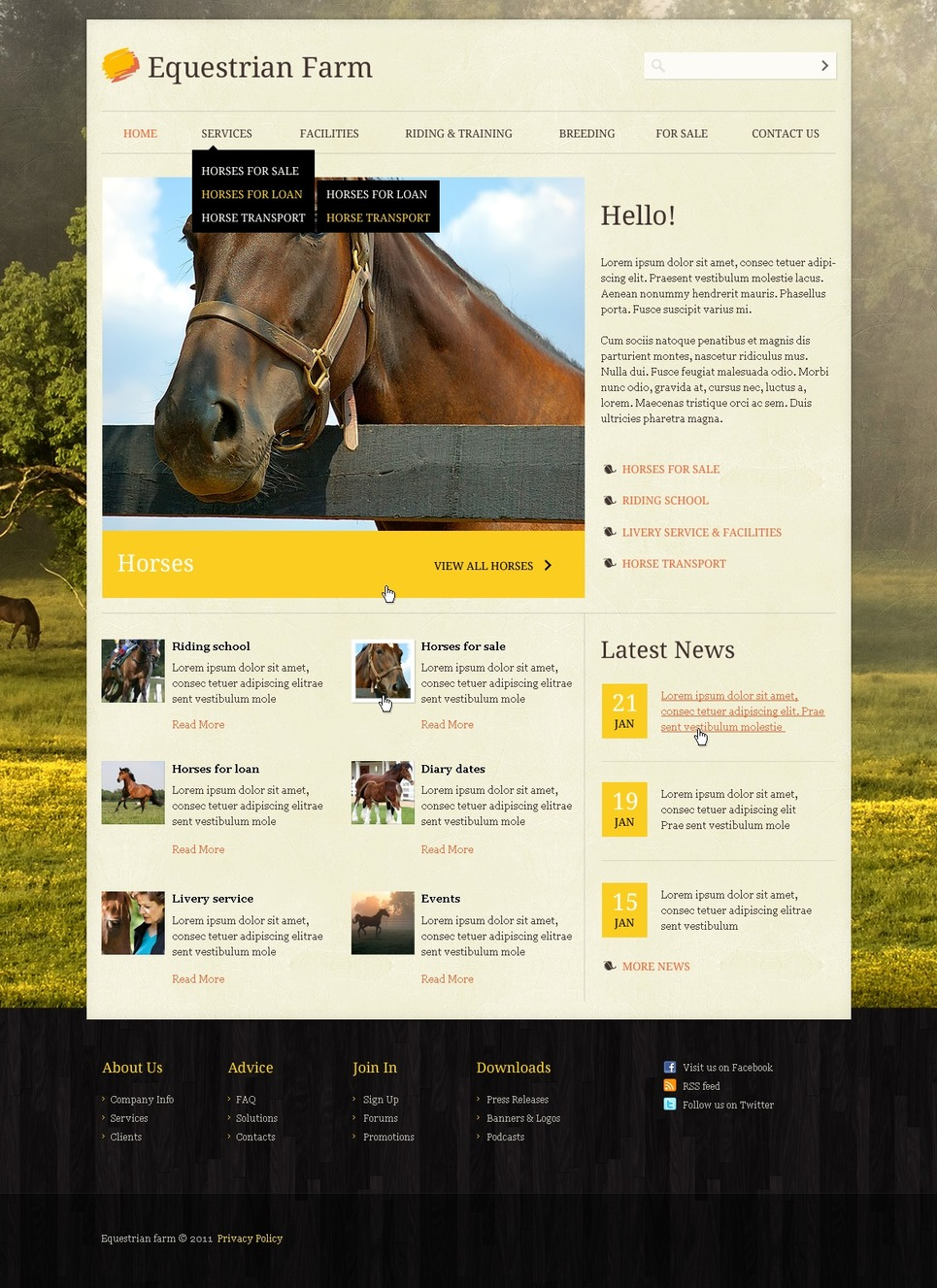 Horse Website Template 36519