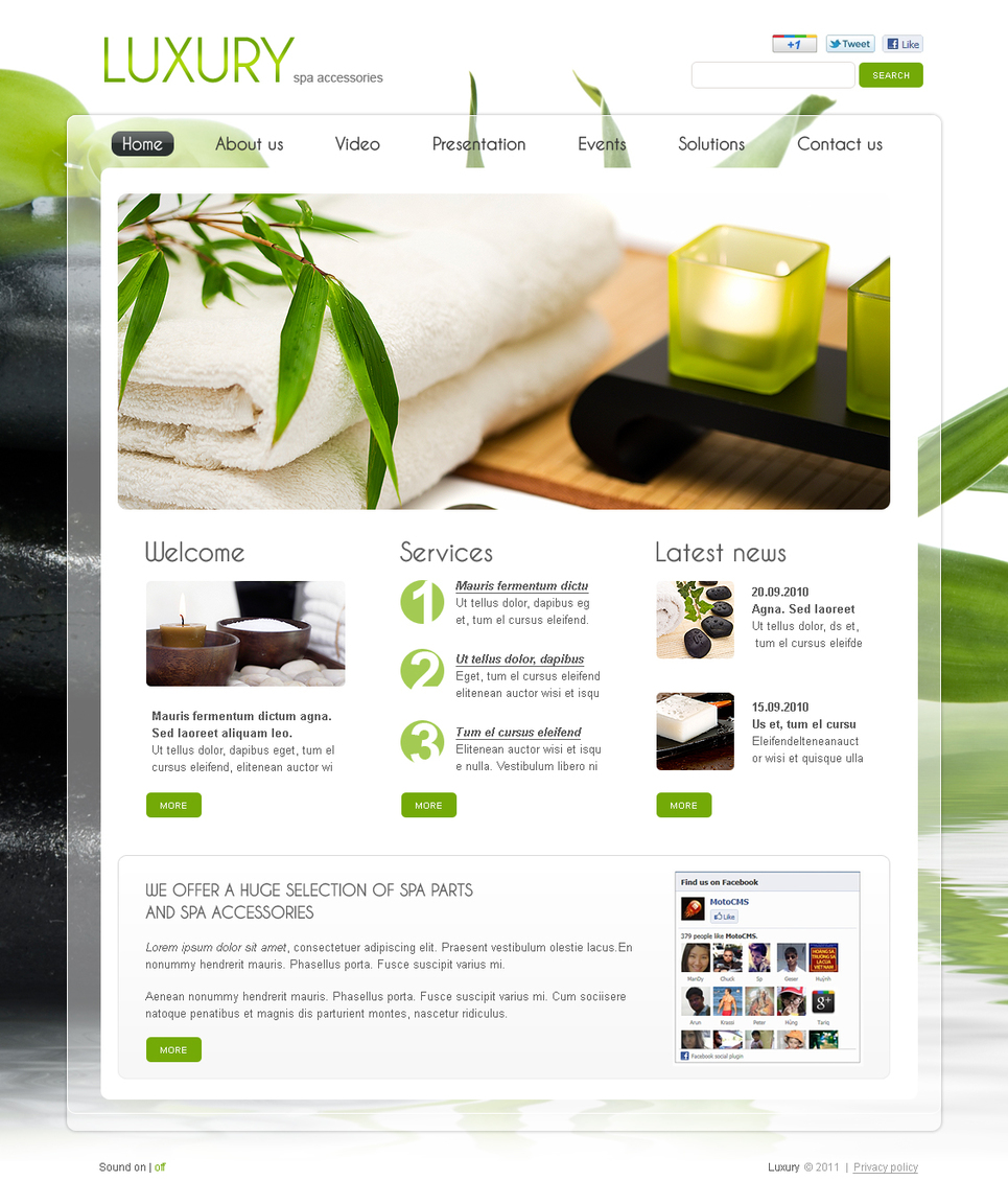 Eco-Friendly Stretchable Flash CMS Template - image