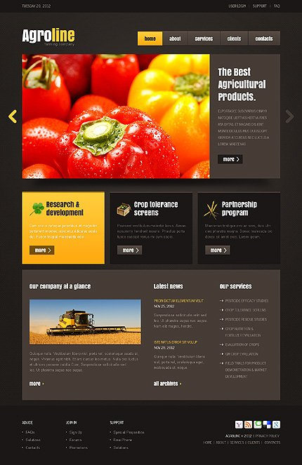 Website Template #37541