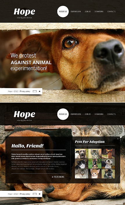Website Template #37962