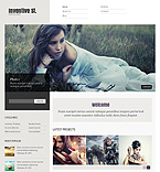 WordPress theme #38219 by Svelte