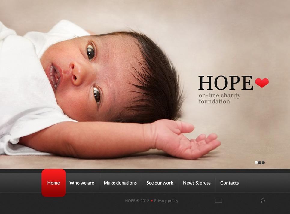Child Charity Flash Template New Screenshots BIG