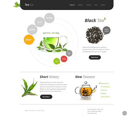 Website Template #38513