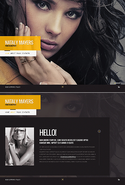 Website Template #38531