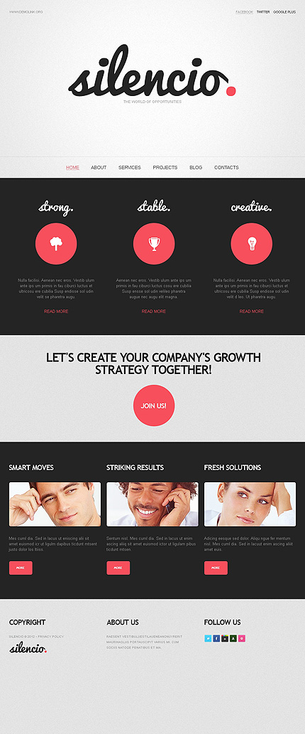 Website Template #38576