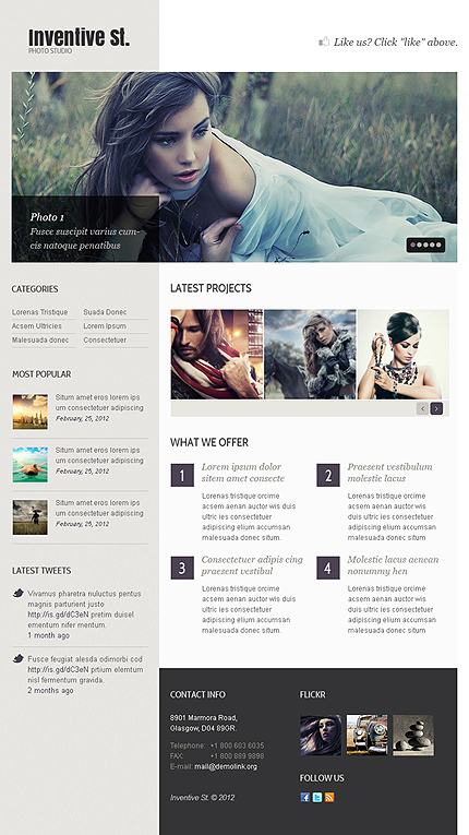 Website Template #38631