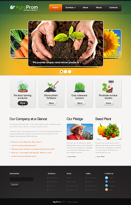 Website Template #38672