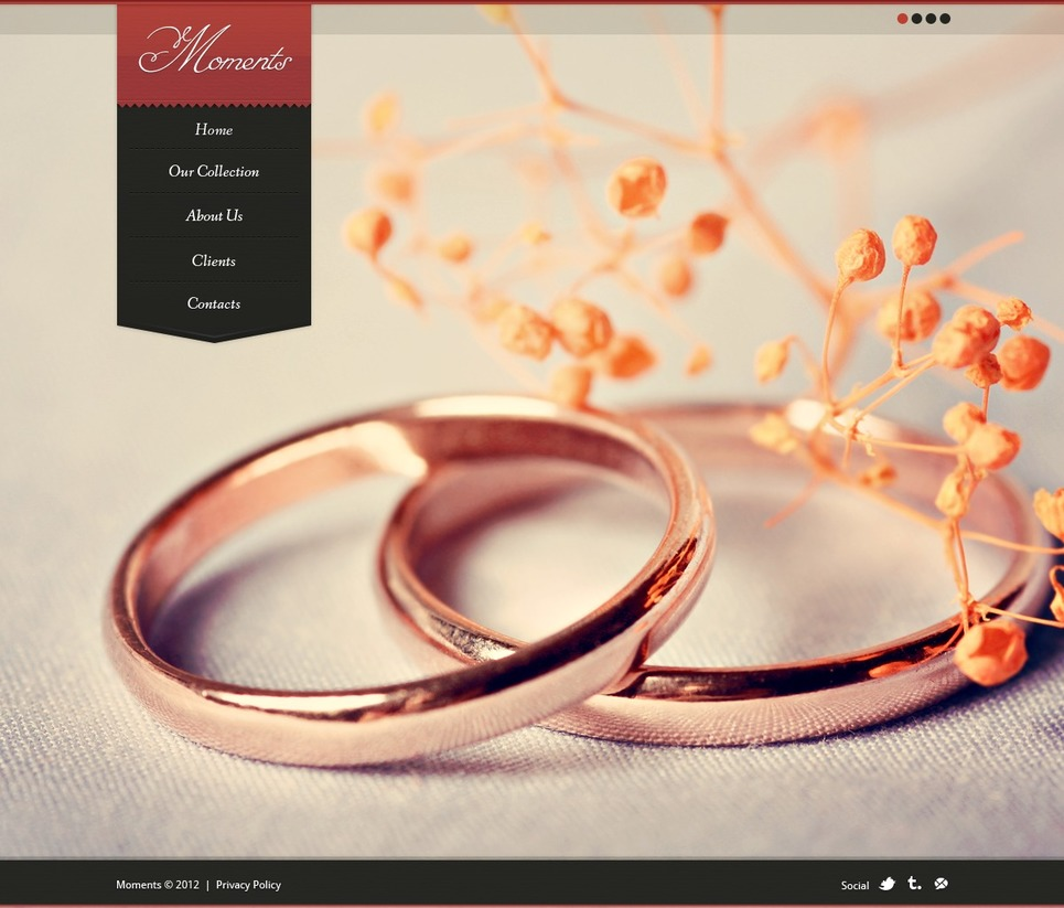 Jewelry Website Template New Screenshots BIG
