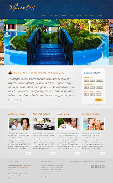 Website Template #38909