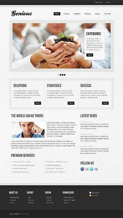 Website Template #38947