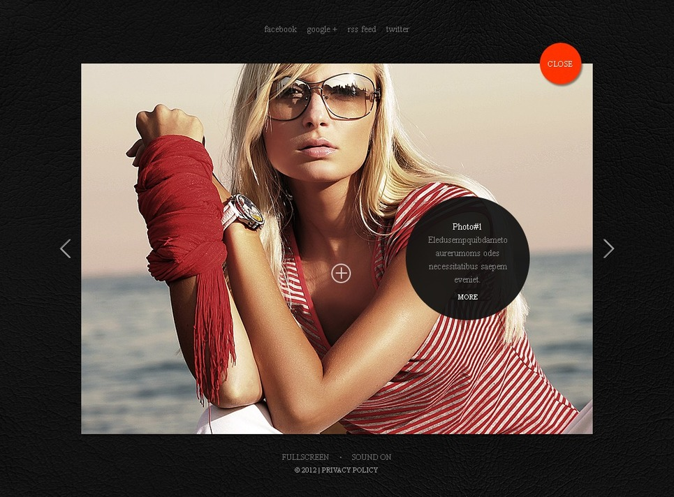 Photographer Portfolio Flash Template New Screenshots BIG