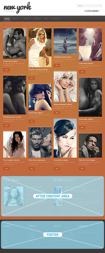 Website Template #39029