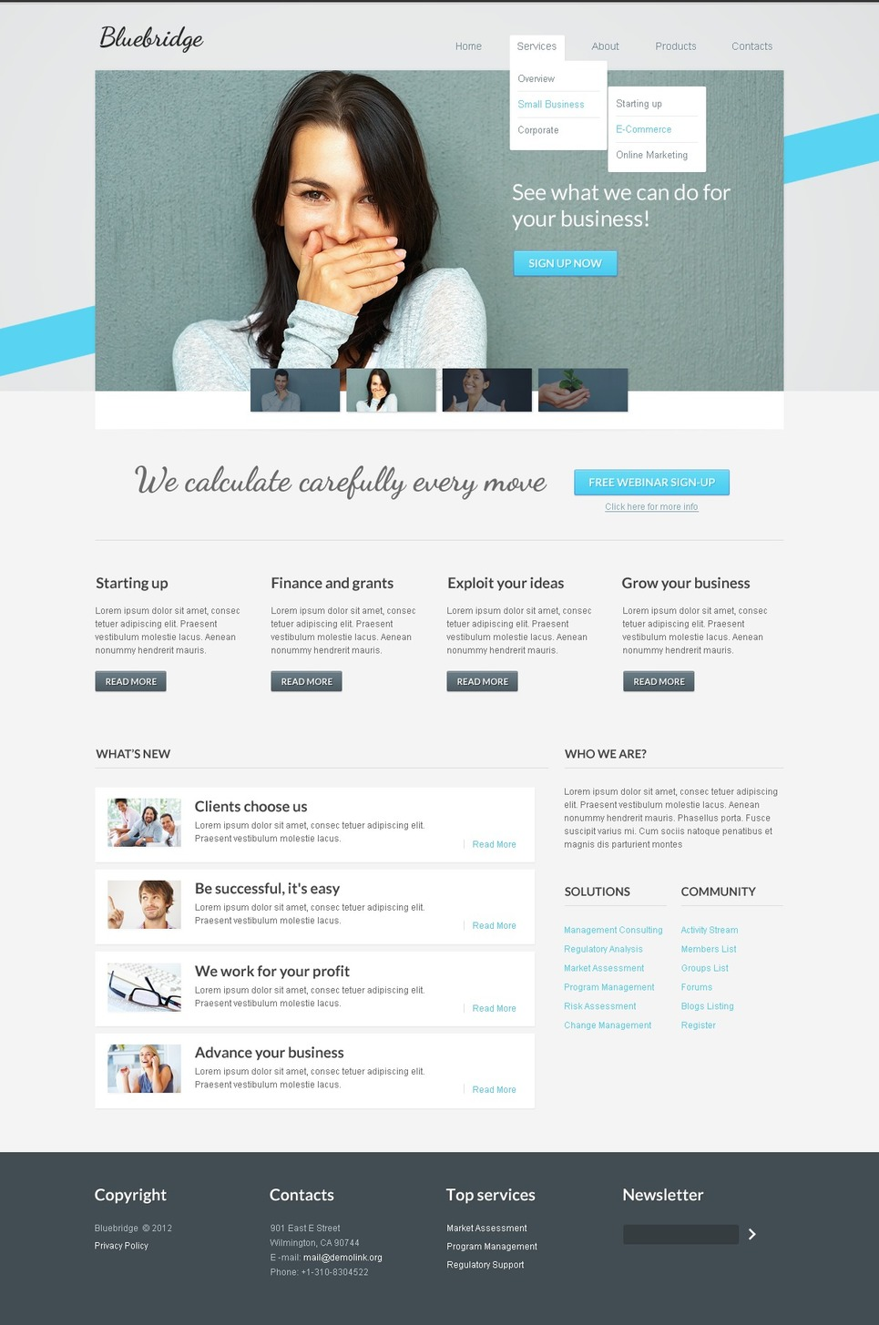 Business Website Template New Screenshots BIG
