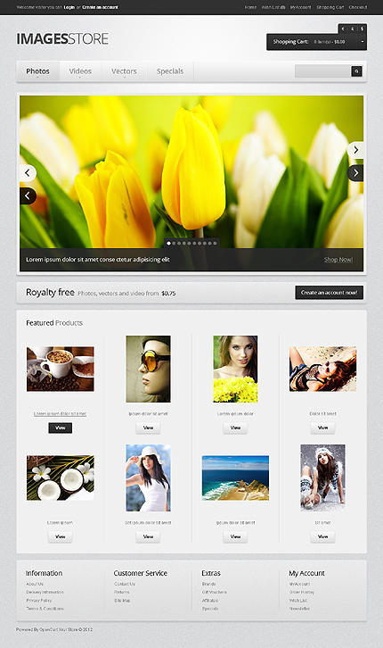 Website Template #39344