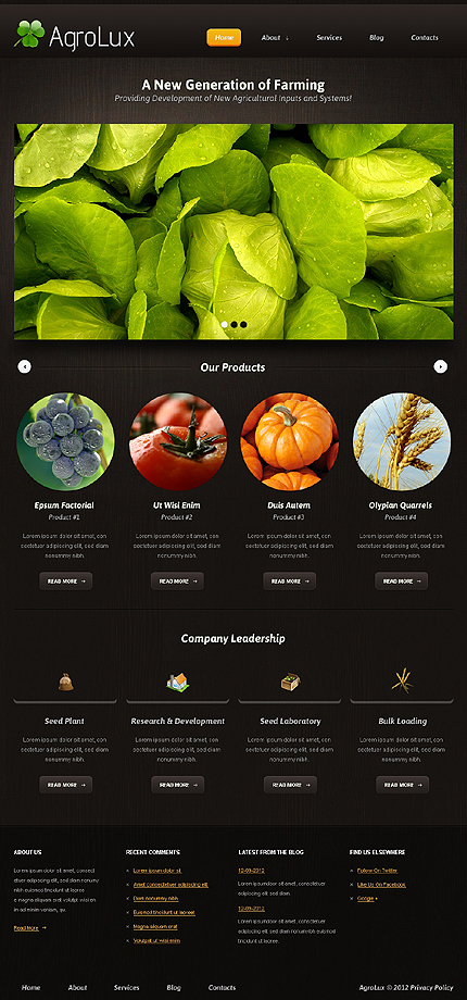 Website Template #39481