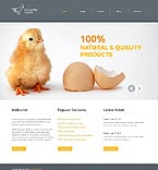 Template #39514 
