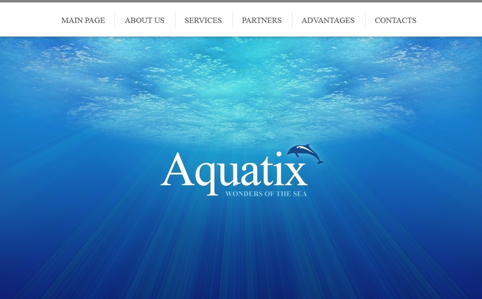 Dolphin Website Template New Screenshots BIG